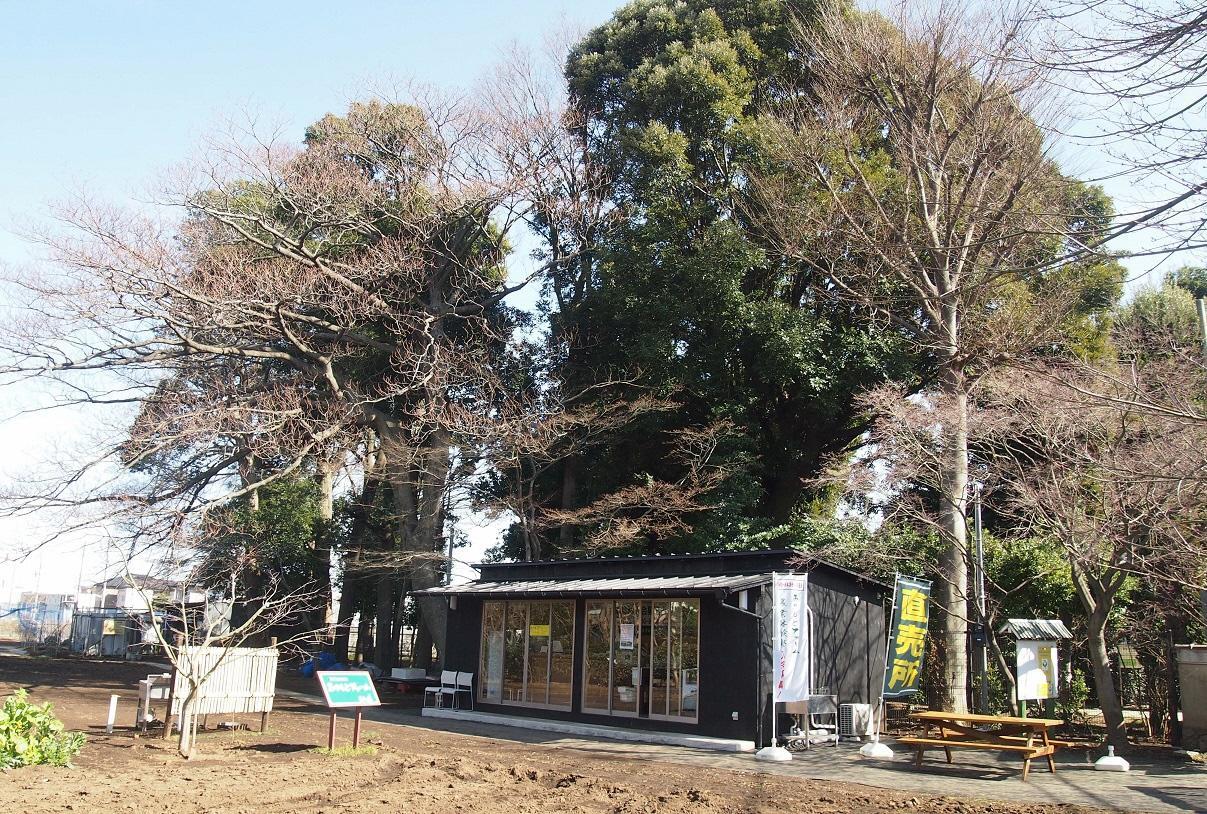 miyamoto農場
