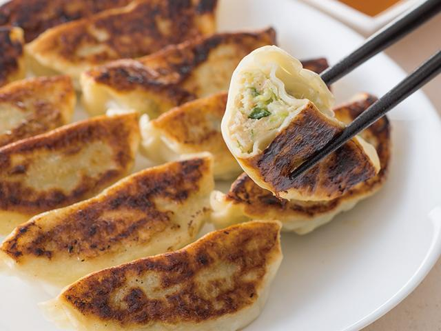 Nerima vegetables gyoza