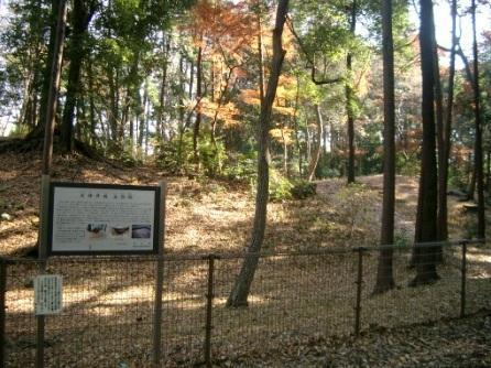The ruins of Shakujii-jo Castle
