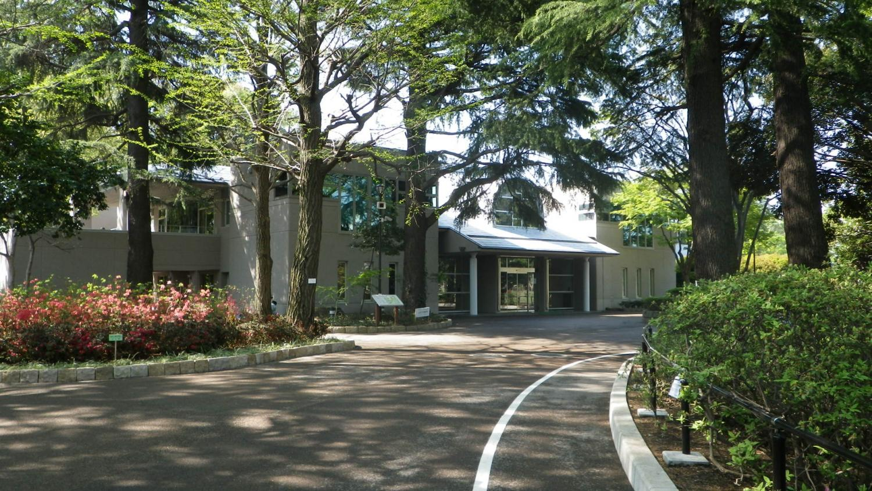 石神井松树的风文化公园图片